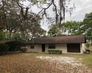 4180 Lakeview Court, Deland image