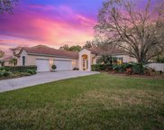 18111 Courtney Breeze Drive, Tampa image