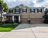 11220 Coventry Grove Circle, Lithia image
