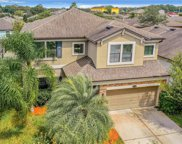 11520 Palmetto Pine Street, Riverview image