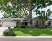 8710 Elmwood Lane, Tampa image