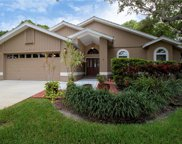 5235 Venice Way Ne, St Petersburg image