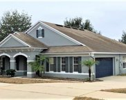 2485 Mallow Oak Court, Apopka image
