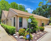 2904 Windmoor Drive S, Palm Harbor image