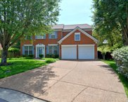 141 Sterling Oaks Ct, Brentwood image