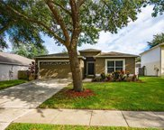 971 Welch Hill Circle, Apopka image