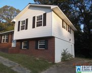 233 Coon Creek Rd, Empire image