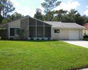 10346 Matchlock Drive, Orlando image