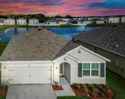 4106 Willow Branch Place, Palmetto image