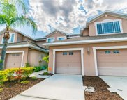 6113 Parkside Meadow Drive, Tampa image