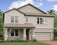 11449 Freshwater Ridge Drive, Riverview image