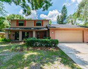 16504 Foothill Drive, Tampa image