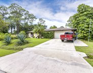 1236 Lingen, Palm Bay image