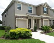 10429 Red Carpet Court, Riverview image
