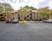 304 Indian Wells Ct. Unit 304, Murrells Inlet image