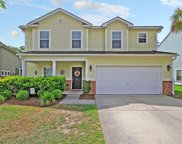 272 Nelliefield Creek Drive, Wando image