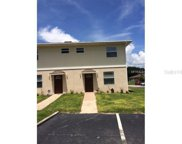 2110 Pine Chace Court, Tampa image
