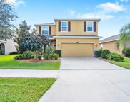 10509 Avian Forrest Drive, Riverview image