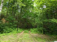 Sycamore St Lot 85, Sevierville image
