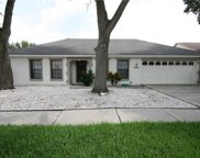 9419 Pebble Glen Avenue, Tampa image