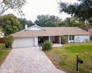 6339 Coopers Green Court, Orlando image