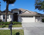 3883 Old Town Drive, Tampa image
