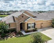 633 Bluehearts Trail, Deland image