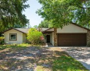 23544 Bellaire Loop, Land O' Lakes image