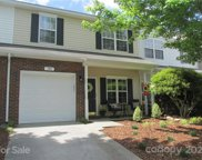 705 Brienza Beach  Way, Fort Mill image