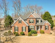 2910 Trailing Ivy Way, Buford image