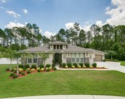 1375 COOPERS HAWK WAY, Middleburg image