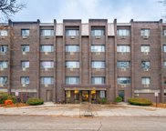 4624 North Commons Drive Unit 210, Chicago image