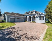 11824 Camden Park Drive, Windermere image