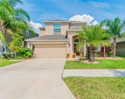 11508 Peru Springs Place, Riverview image