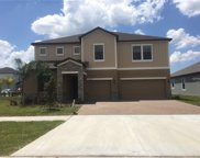 13613 White Sapphire Road, Riverview image