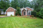 10502  Sycamore Club Drive, Mint Hill image