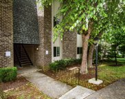 3636 Taliluna Ave Unit Apt 220, Knoxville image