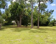 183 Palmetto Dunes Cir, Naples image