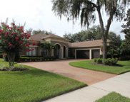 5719 Ternpark Drive, Lithia image
