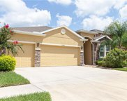 13428 Canopy Creek Drive, Tampa image