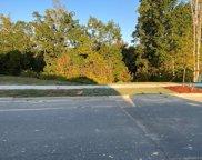 17431 Summers Walk  Boulevard, Davidson image