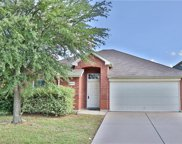 313 Mystic River Trail, Fort Worth image