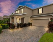 14564 Spotted Sandpiper Boulevard, Winter Garden image