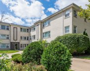 5230 North Potawatomie Avenue Unit 103, Chicago image