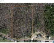 4405 Co Rd 12 Unit 9+/- Ac, Odenville image
