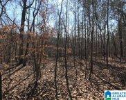 365 Charnell Drive Unit Tract 3 - 4.07 Acres, Ashville image