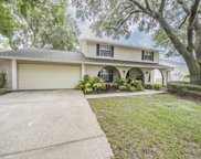 4608 Cloverlawn Drive, Tampa image