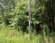 133RD PATH, Live Oak image