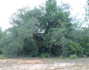 47 +/- AC Old Bethel Road, Crestview image