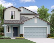 7410 Rosy Periwinkle Court, Tampa image